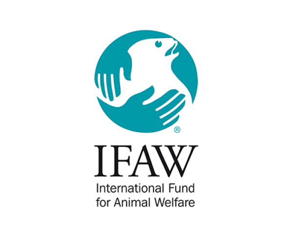 The International Fund for Animal Welfare (IFAW)