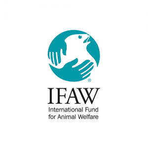 clients_ifaw